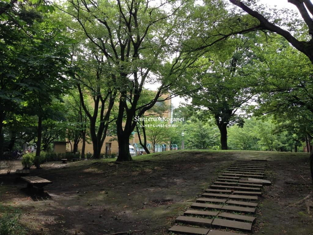 栗山公園 構内