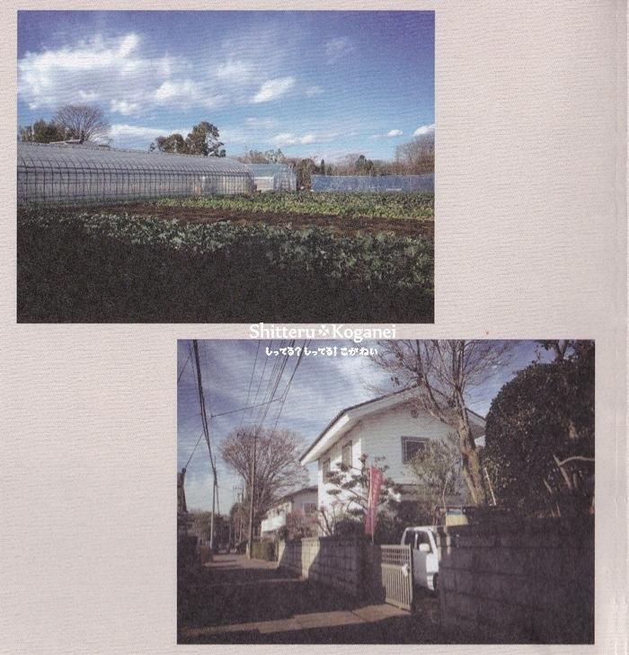 小金井 江戸の農家みち