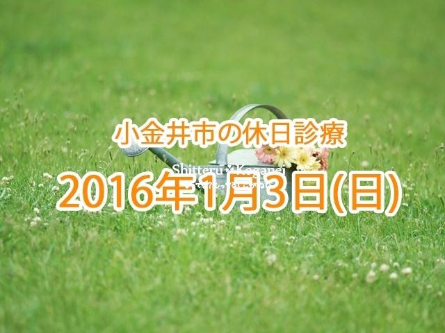 小金井市休日診療TOP_20160103
