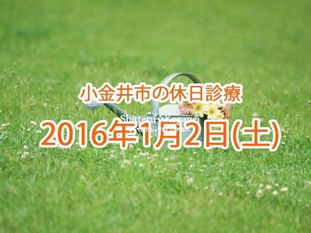 小金井市休日診療TOP_20160102