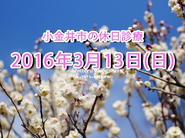 小金井市休日診療TOP_20160313