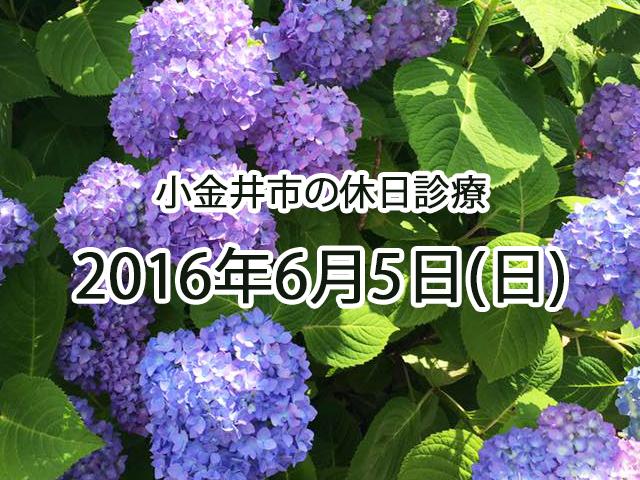 小金井休日診療TOP_20160605