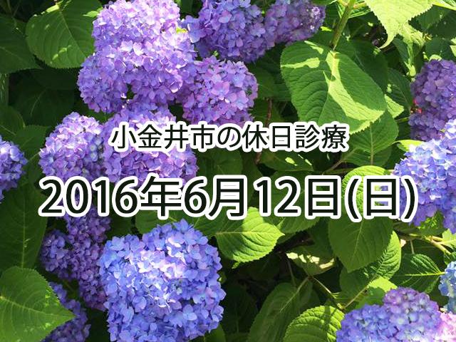 小金井休日診療TOP_20160612
