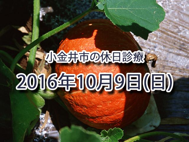 小金井市休日診療TOP_20161009