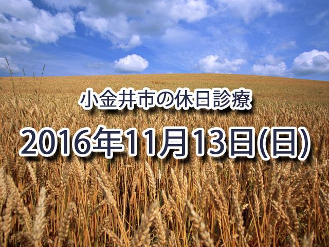 小金井休日診療_2016年11月13日(日)