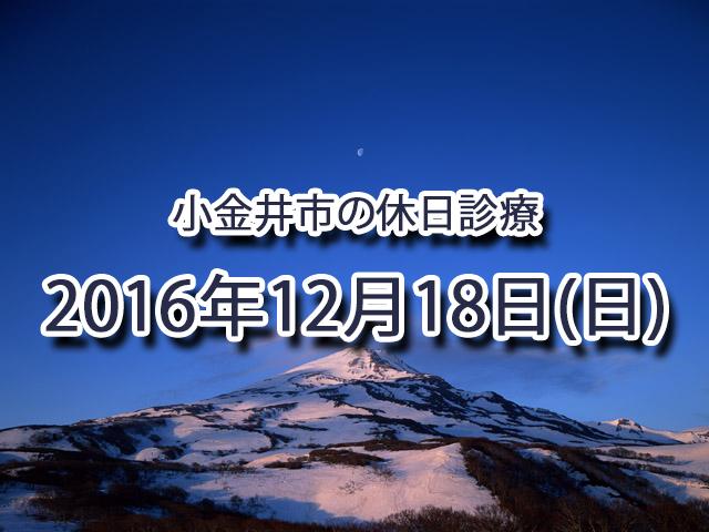 小金井市休日診療TOP_20161218