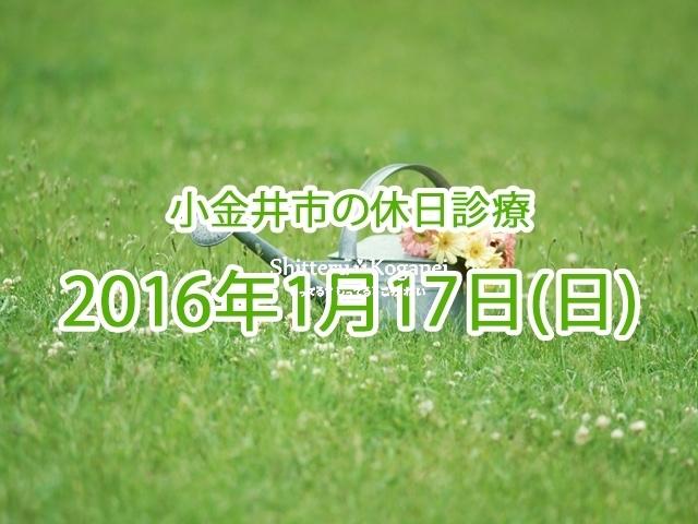 小金井市休日診療TOP_20160117