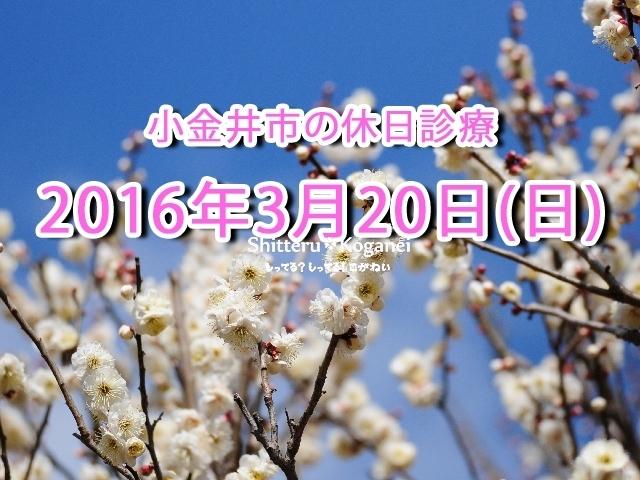 小金井市休日診療TOP_20160320