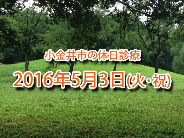 小金井市休日診療_20160503