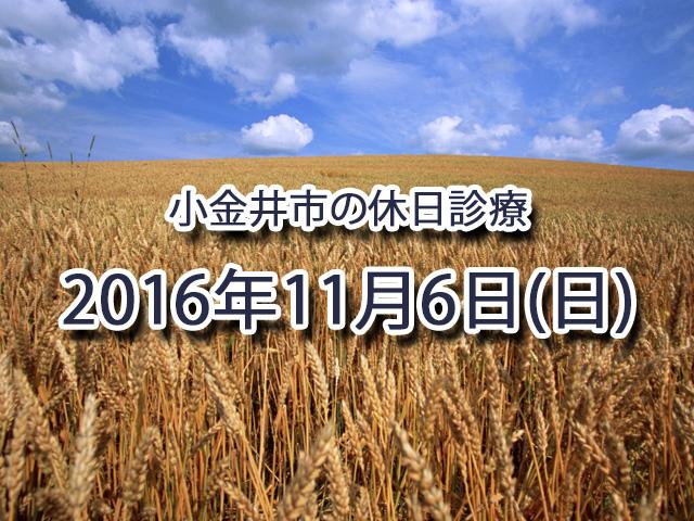 小金井市休日診療TOP_20161106