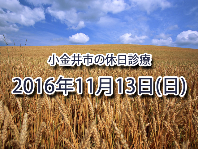小金井市休日診療TOP_20161113