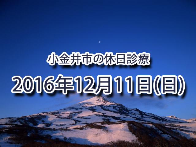 小金井市休日診療TOP_20161211