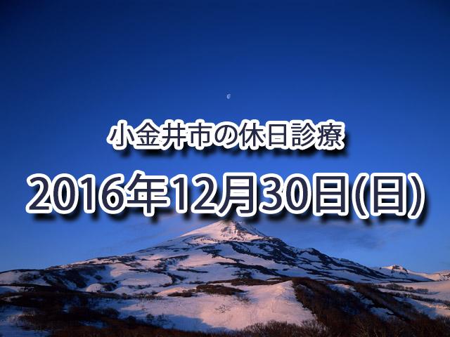 小金井市休日診療TOP_20161230